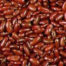 Beans - Kidney
