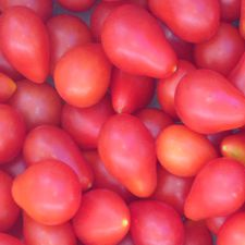 Red Pear Cherry Tomato