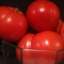 Sub Arctic Maxi Tomato